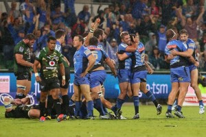 Hodgo team celebration after Bulls win